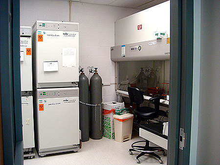 University Of Houston Biomedical Engineering Research Core
